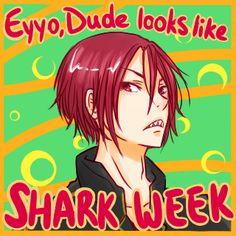 AY YO HOMEBOY LOOKS LIKE SHARK WEEK I AIN'T MESSIN' WITH THAT