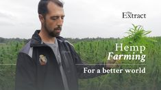 Hemp Farming - How to Grow Hemp for Sustainable Farming? have you been wanting to learn how to farm hemp? Sustainable Environment, Sustainable Farming, Organic Farming, Sustainability, Growing Weed, Cannabis News, Circular Economy, Carbon Footprint, Worlds Of Fun