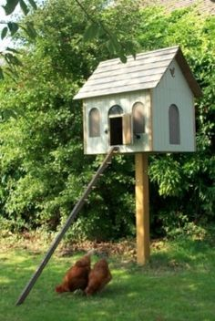 T&G Style Hen House