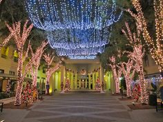 Sugden Plaza decked for the holidays,  Downtown Naples, FL