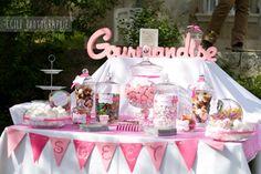 Mariage thème rose pâle et rose fuchsia avec une note de gris. Candy Bar