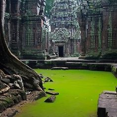 TA PROHM TEMPLE, CAMBODIA Photograph by Peter Nijenhuis Ta Prohm is the modern name of a temple at Angkor, Siem Reap Province, Cambodia, built in the Bayon style largely in the late and early centuries and originally called Rajavihara. Places Around The World, Oh The Places You'll Go, Places To Travel, Places To Visit, Around The Worlds, Travel Destinations, Vietnam, Abandoned Places, Abandoned Buildings