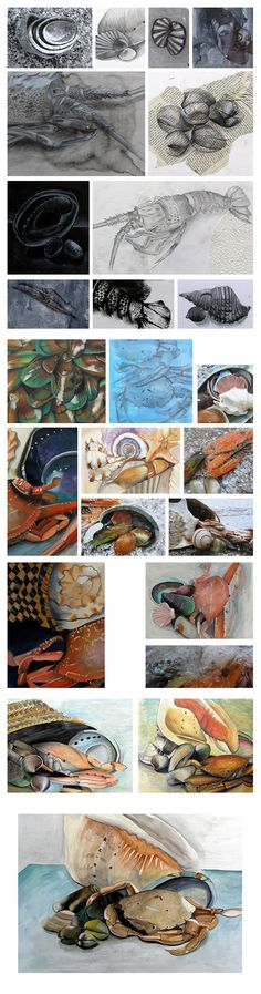 A beautiful Art Exam by Year 11 student Nikau Hindin in response to the topic 'crustaceans'. IGCSE Art & Design
