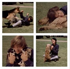 """The Monkees """"I'm Gonna Buy Me A Dog"""" - these pictures bring me joy...Mike and Peter especially!"""