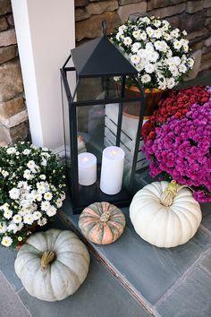 LOVE these malta lanterns!