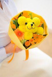 teddy flower