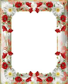 Transparent PNG Photo Frame with Red Poppies.