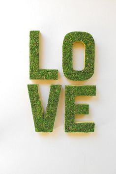 moss wedding ideas for your decor. If you're planning a woodland wedding (or rustic), you've come to the right place! Moss Wedding Decor, Woodsy Wedding, Forest Wedding, Wedding Ideas, Bridal Shower Decorations, Valentine Decorations, Wedding Decorations, Moss Letters, Wedding Invitation Trends