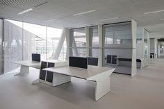 Espacios para trabajar: las oficinas de Adidas - 1/10 - Tamaño original
