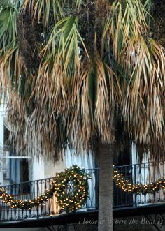 Charleston, SC's Palmetto trees, not palm trees.