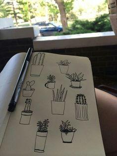 *kaktusy*