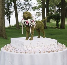 Including your pet in your big day is just as important as including any other guest. Or maybe you're honoring your late pet, here are some ways on how to include them on your special day. For more ideas, head to the link! Wedding Reception Seating, Creative Wedding Ideas, Wedding Planning Tips, Table Cards, Event Design, Special Day, Floral Arrangements, Your Pet, Wedding Decorations