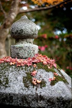 Autumn colors to decline to a garden lantern Kyoto Japan