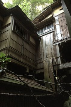 A famous Japanese-style painter's remains of an atelier: A wooden house like a labyrinth was abandoned quietly. 森の庵: 歴史に名を残す日本画家のアトリエ跡。迷宮のような複雑な間取りの木造家屋が、人知れず朽ちるがままに残っていました。