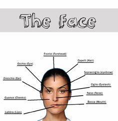Learning Italian - The Face
