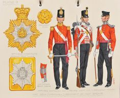 The (Cornwall) Regiment of Foot; Officer of Battalion Companies, Private of Light Company and Sergeant Major - British Army Uniform, British Uniforms, Red Coats, Crimean War, Military Uniforms, Army & Navy, British Colonial, Photo Reference, Armed Forces