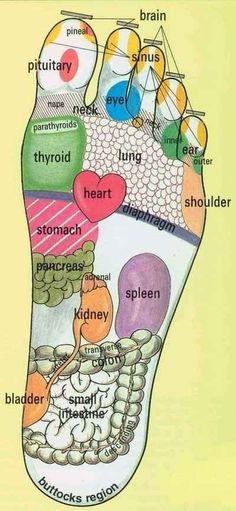 5 Easy To Learn Reflexology Foot Maps