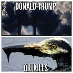 Donald Trump oil is not a solution #donaldtrump #usa #oil #oilkills #seashepherd #gegenhass #greenpeace #grünen #linke #wwf #peta #nabu #Obama #animallover #bird #nature #sea #antifa #conservationist #protectionist  #savetheword #world #animals #govegan #goveggie #birdlife