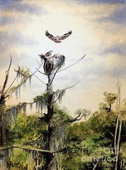 Florida Paintings - Ospreys Nesting Wakulla River  by Bill Holkham