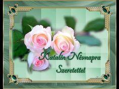 ✿✿✿KATALIN NÉVNAPRA SZERETETTEL✿✿✿ - YouTube Rose, Youtube, Flowers, Plants, Roses, Flora, Royal Icing Flowers, Youtubers, Plant