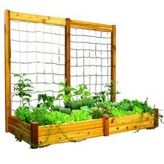 Here's the ideal planter for novice and hobby gardeners alike. Raised garden beds eliminate tilling, soil amending, and minimize weeding. They are quick and easy to assemble plant and maintain. The trellis will save space and maximize your growing area and production. Great for growing peas, pole beans, cucumbers, morning glory, or any variety of vegetables and flowers that will climb.