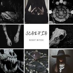 Can you use astrology to see past lives in the birth chart? Scorpio Art, Zodiac Signs Scorpio, Scorpio Horoscope, Zodiac Art, Astrology Zodiac, Horoscopes, Scorpio Traits, Astrology Chart, 12 Zodiac