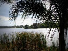 This could be the lake at Lancer Park, where Tasmyn and Michael had their first kiss <3