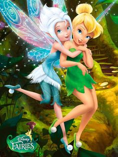 Disney Fairies these two are adorable allyson. Twinzies