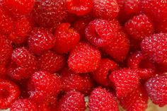 Fresh Raspberry Fragrance Oil - Soap fragrance oil - Scents for soap - Cold Process Soap Making Supp Raspberry Gin, Raspberry Ketones, Raspberry Plants, Les Chakras, Mint Hair, Red Hair, Best Weight Loss Plan, Tamarindo, Healthy Soup Recipes