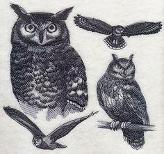 Eagle Owl Sketch design (H5900) from www.Emblibrary.com
