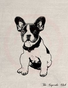 Custom Pet Dog Portrait Clip Art Designs Transfer Digital File Vintage Download DIY Scrapbook Shabby Chic Pillow Black Jewlels. $15.00, via Etsy.