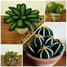 Billedresultat for how to crochet cactus Crochet Amigurumi, Amigurumi Patterns, Knitting Patterns, Crochet Flower Patterns, Crochet Flowers, Crochet Home, Cute Crochet, Cactus E Suculentas, Crochet Cactus