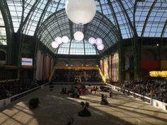 Beautiful steel and glass roof domes of the Grand Palais shielding the Saut Hermes horse show in the heart of Paris