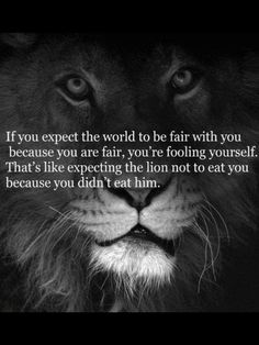 Lions will not be swayed by the opinions of sheep.