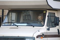 Here's a question for you! If your pet could drive your... where would he take you camping or RVing? ;)