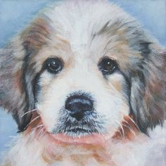 """Great Pyrenees dog art CANVAS giclee print of LA Shepard painting 8x8"""" portrait by TheDogLover on Etsy https://www.etsy.com/listing/59430831/great-pyrenees-dog-art-canvas-giclee"""