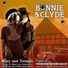 Fan-Art: Bonnie & Clyde Musical with Guinea Pigs