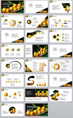 23+ business share proportion PowerPoint templates