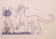 Wowza look real art! My friend @LaLunaMoon just got a new cat (the Siamese) and that's an expectation of what her other cat Percy would do one he meets her. @CitrusTea