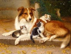 Paintings with dogs and cats. Willhelm Schwar
