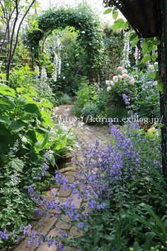 たて直した庭に 撮影&取材が来てくれたよ : miyorinの秘密のお庭