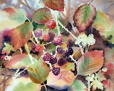 Ann Mortimer's Painting Blog: Blackberries Stage 4