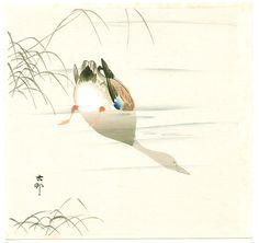 Diving Mallard (light color version) by Ohara Koson, ca. 1910