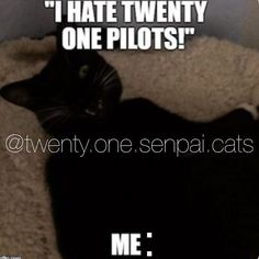 I made this meme for a Twenty One Pilots Instagram account I share with my sister and my friend. The cat in the meme is my cat, Pepper.    I can totally relate to this meme! 🙋🏼