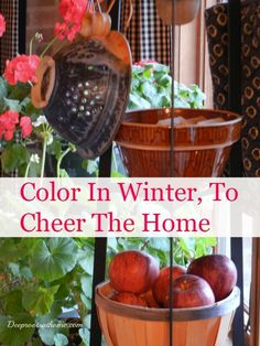 Pops of Color In Winter, How I Cheer My Home & My Heart Geraniums in my window, basket of apples on the tripod stand Decorating Your Home, Diy Home Decor, Decorating Tips, Color Splash, Color Pop, Farmhouse Side Table, All Natural Skin Care, Frugal Living Tips, Organic Gardening