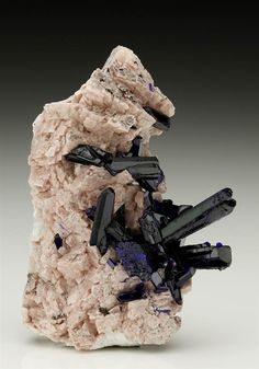 A neat display of lustrous dark royal blue bladed-prismatic Azurite crystals on Dolomite from the Tsumeb Mine. Namibia. Crystal Classics Minerals