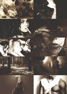 are pack and blood, bone and earth and hunt. they walk with men like shadows: head high, shoulders square, skin bare. tensing muscles, aching bones, racing pulses seize power in the night.