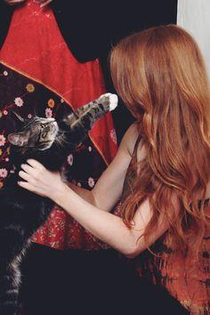 Cat photo shoot