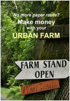 Urban gardening is the new paper route -- teach kids about growing great food and help them earn money.