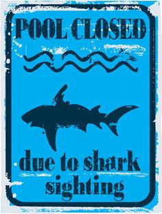 Pool Closed Due to Shark Sighting Metal Sign, Modern Blue Safety Warning Decor for sale online Shark Pool, Shark Swimming, Baby Shark, Pool Signs, Beach Signs, Tin Signs, Metal Signs, Shark Party, Decorative Signs